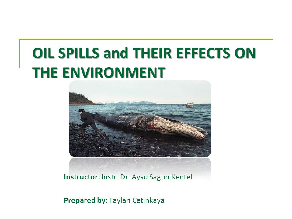 OIL SPILLS and THEIR EFFECTS ON THE ENVIRONMENT Instructor: Instr.