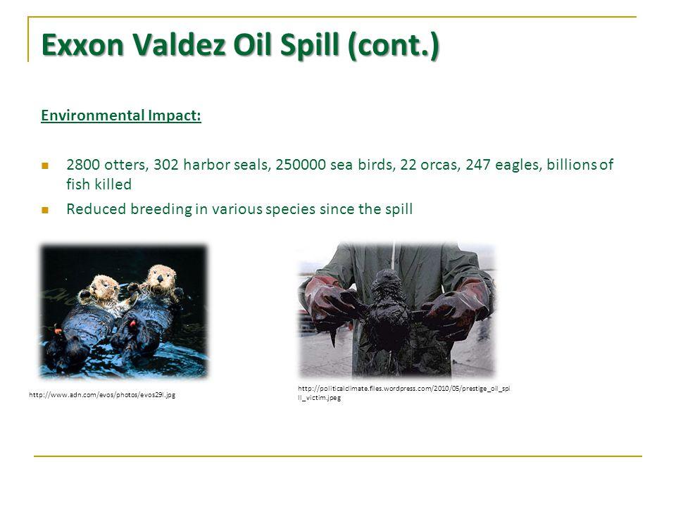 Exxon Valdez Oil Spill (cont.) Environmental Impact: 2800 otters, 302 harbor seals, 250000 sea birds, 22 orcas, 247 eagles, billions of fish killed Reduced breeding in various species since the spill http://www.adn.com/evos/photos/evos29l.jpg http://politicalclimate.files.wordpress.com/2010/05/prestige_oil_spi ll_victim.jpeg