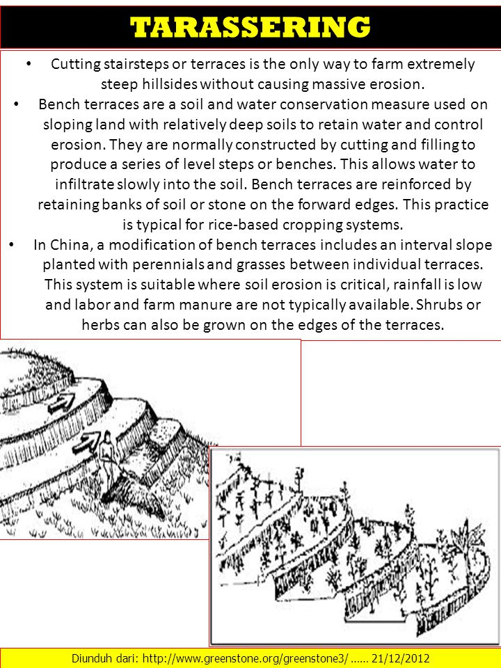 Cutting stairsteps or terraces is the only way to farm extremely steep hillsides without causing massive erosion. Bench terraces are a soil and water