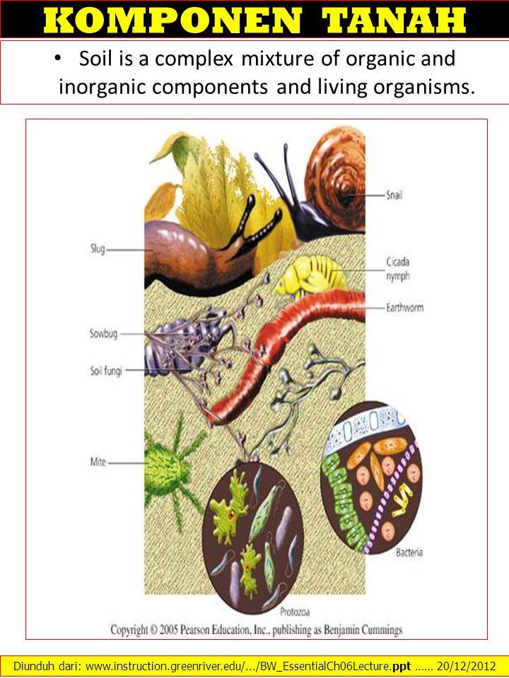 KOMPONEN TANAH Soil is a complex mixture of organic and inorganic components and living organisms. Diunduh dari: www.instruction.greenriver.edu/.../BW