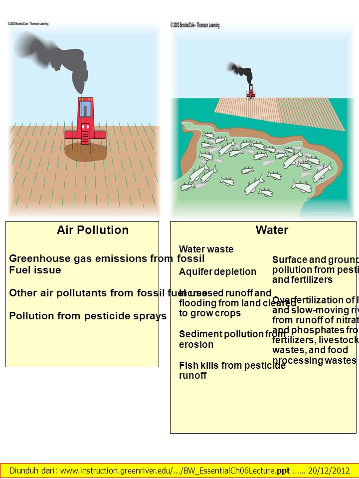 Air Pollution Greenhouse gas emissions from fossil Fuel issue Other air pollutants from fossil fuel use Pollution from pesticide sprays Water Water wa