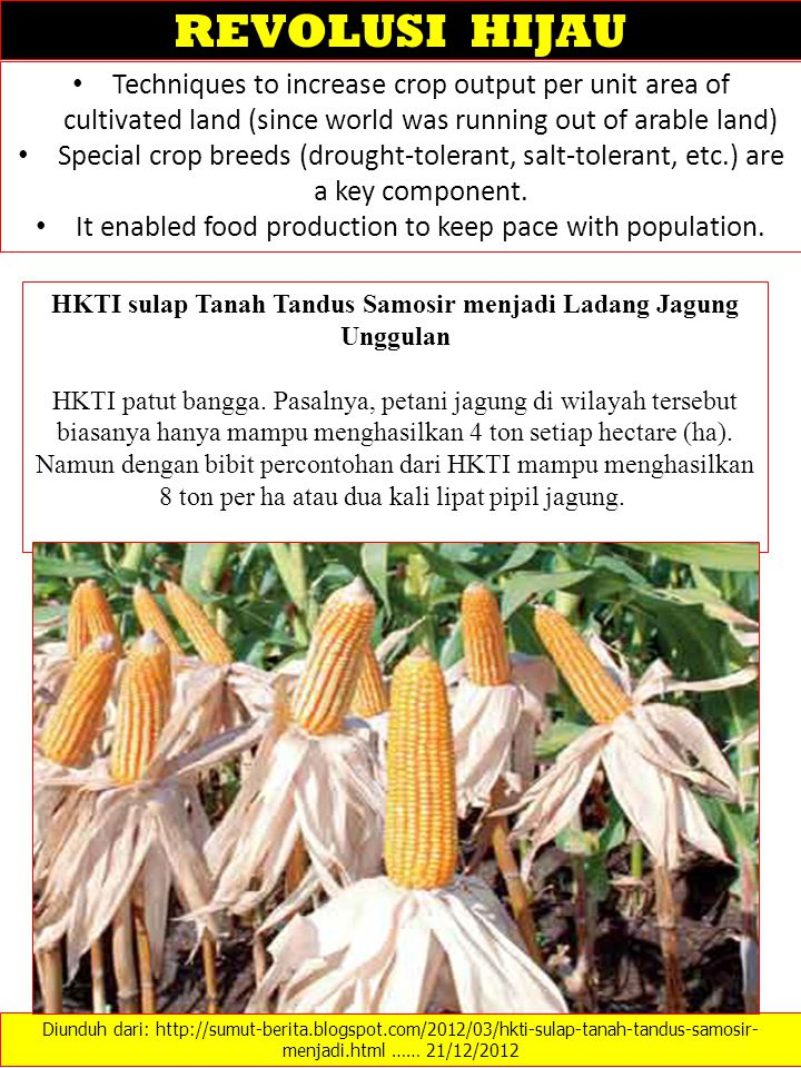 Techniques to increase crop output per unit area of cultivated land (since world was running out of arable land) Special crop breeds (drought-tolerant