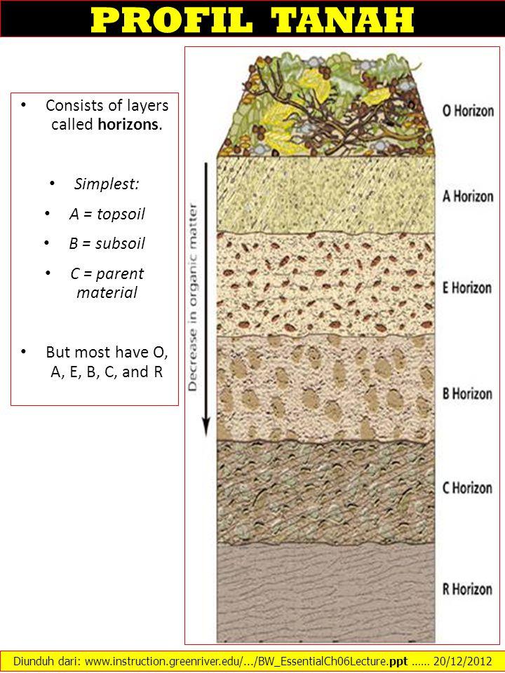 SOIL PROFILE O Horizon: Organic or litter layer A Horizon: Topsoil.