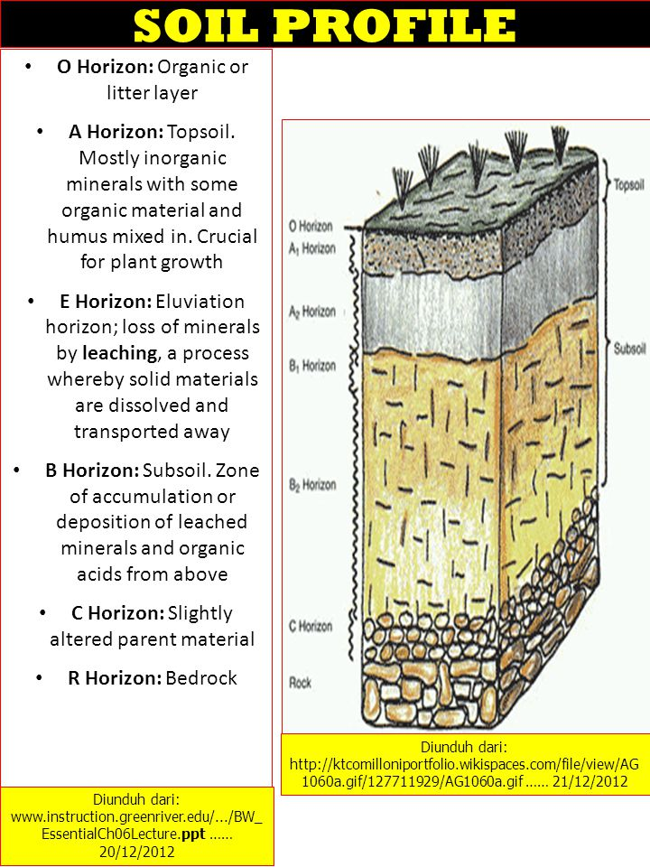 DESKRIPSI TANAH Soil can be characterized by color and several other traits: – Texture (percentage sand, silt, clay) – Structure; Porosity – Cation exchange capacity ; pH – Parent Material – Infiltration rate – Nutrient concentrations – Best for plant growth is loam, an even mix of sand, silt and clay.