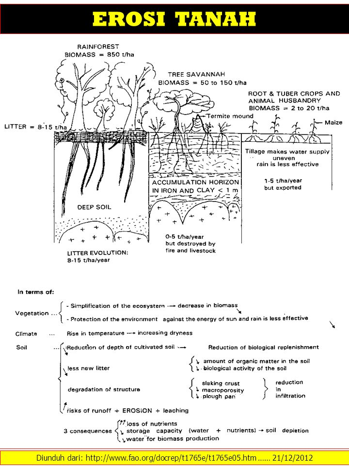 TIPE EROSI TANAH Diunduh dari: http://extension.missouri.edu/p/G1509 …… 21/12/2012 Raindrop impact is the major cause of soil particle detachment, which can result in the particles moving down slope in flowing water (as sheet erosion) during a rainfall event.