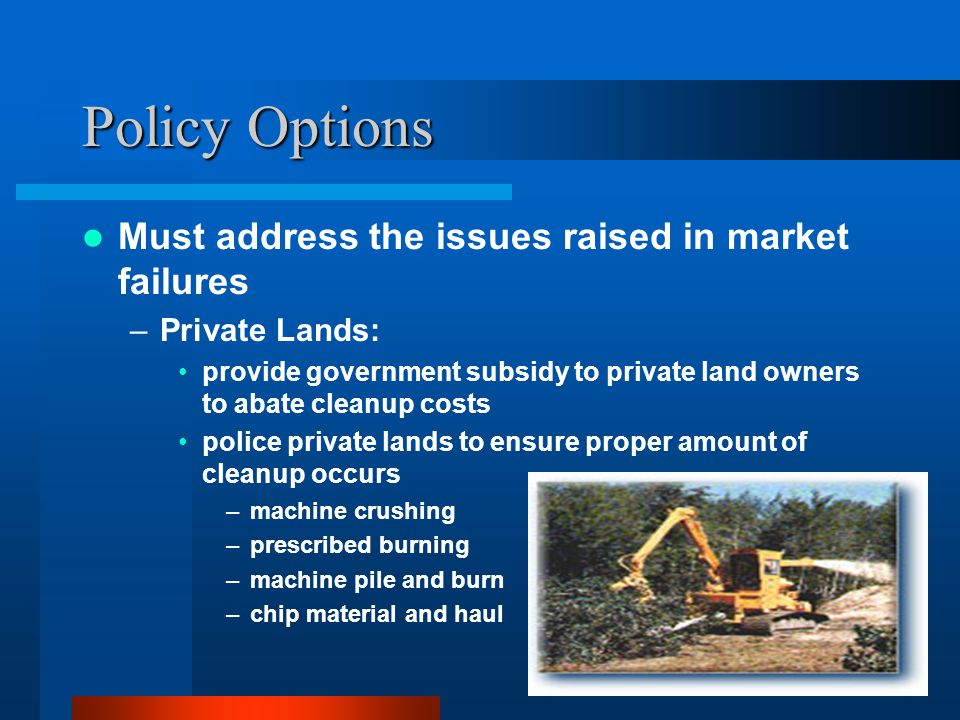 Policy Options, cont.