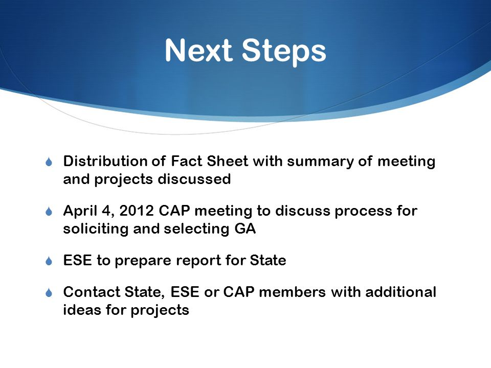 Next Steps  Distribution of Fact Sheet with summary of meeting and projects discussed  April 4, 2012 CAP meeting to discuss process for soliciting and selecting GA  ESE to prepare report for State  Contact State, ESE or CAP members with additional ideas for projects