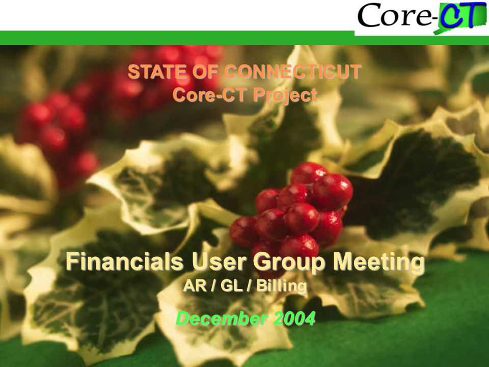 STATE OF CONNECTICUT Core-CT Project Financials User Group Meeting AR / GL / Billing December 2004