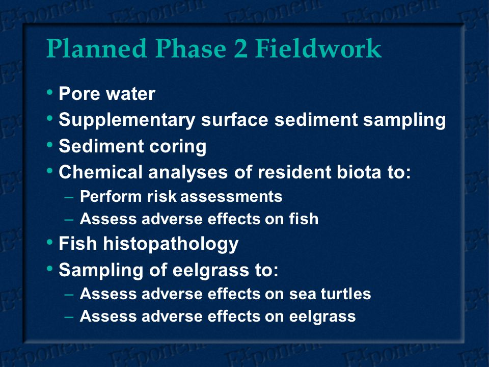 Planned Phase 2 Fieldwork Pore water Supplementary surface sediment sampling Sediment coring Chemical analyses of resident biota to: – –Perform risk assessments – –Assess adverse effects on fish Fish histopathology Sampling of eelgrass to: – –Assess adverse effects on sea turtles – –Assess adverse effects on eelgrass