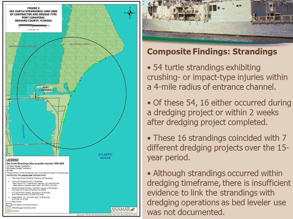 Composite Findings: Strandings 54 turtle strandings exhibiting crushing- or impact-type injuries within a 4-mile radius of entrance channel.