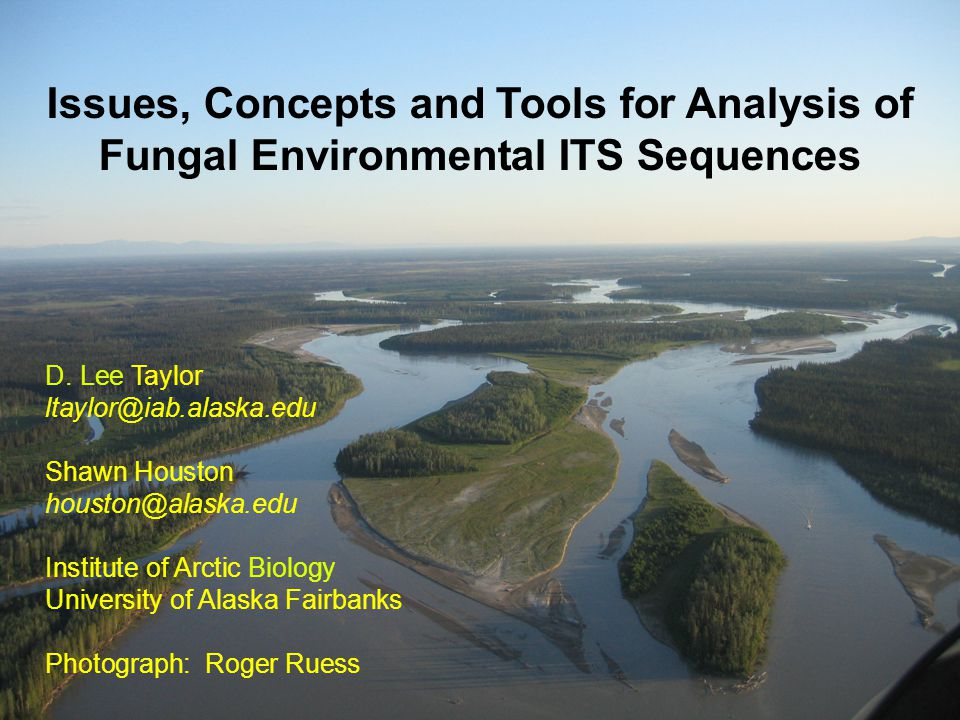 Issues, Concepts and Tools for Analysis of Fungal Environmental ITS Sequences D.