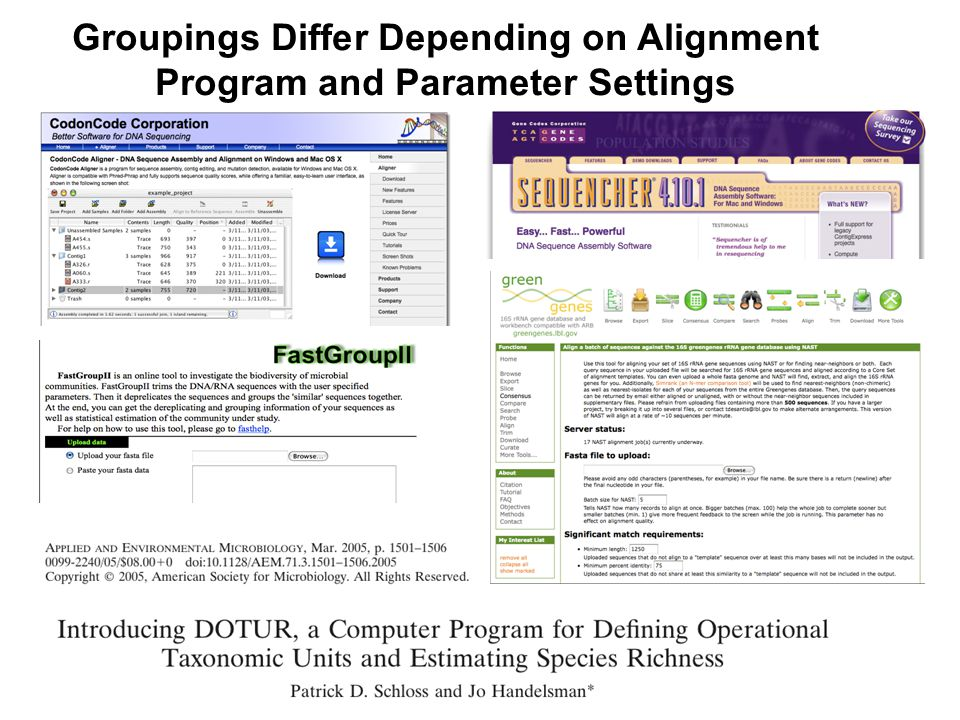 Groupings Differ Depending on Alignment Program and Parameter Settings