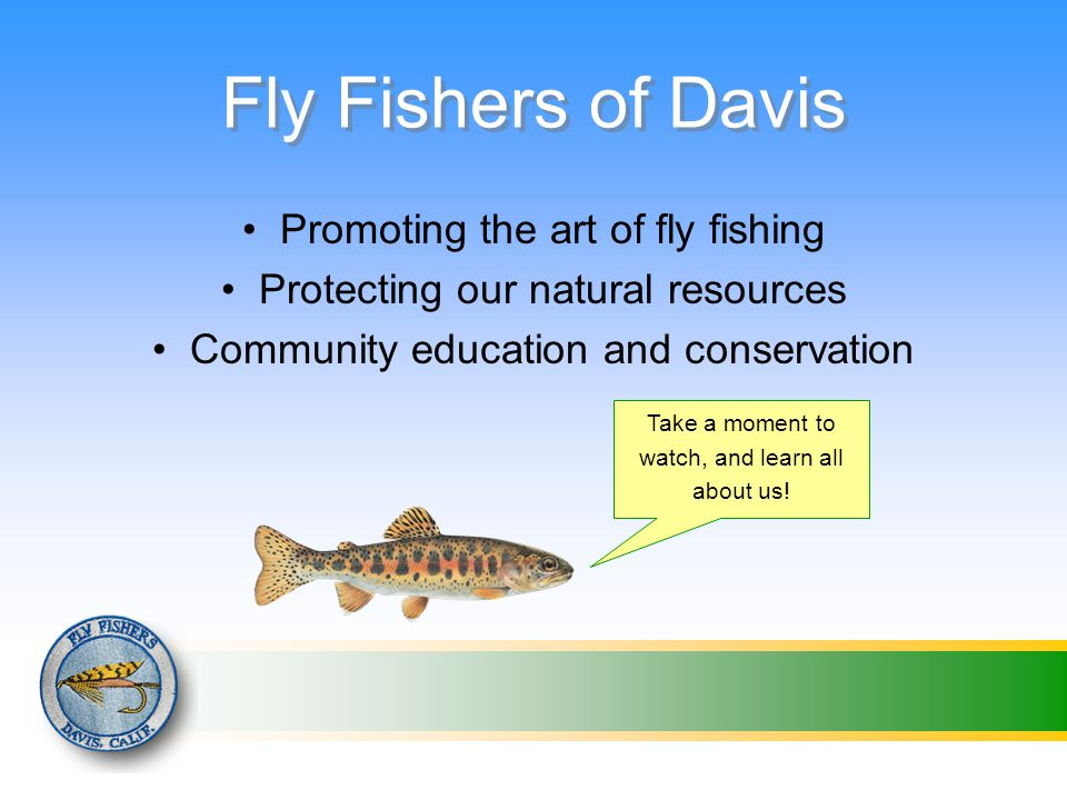 Fly Fishers of Davis Promoting the art of fly fishing Protecting our natural resources Community education and conservation Take a moment to watch, and learn all about us!