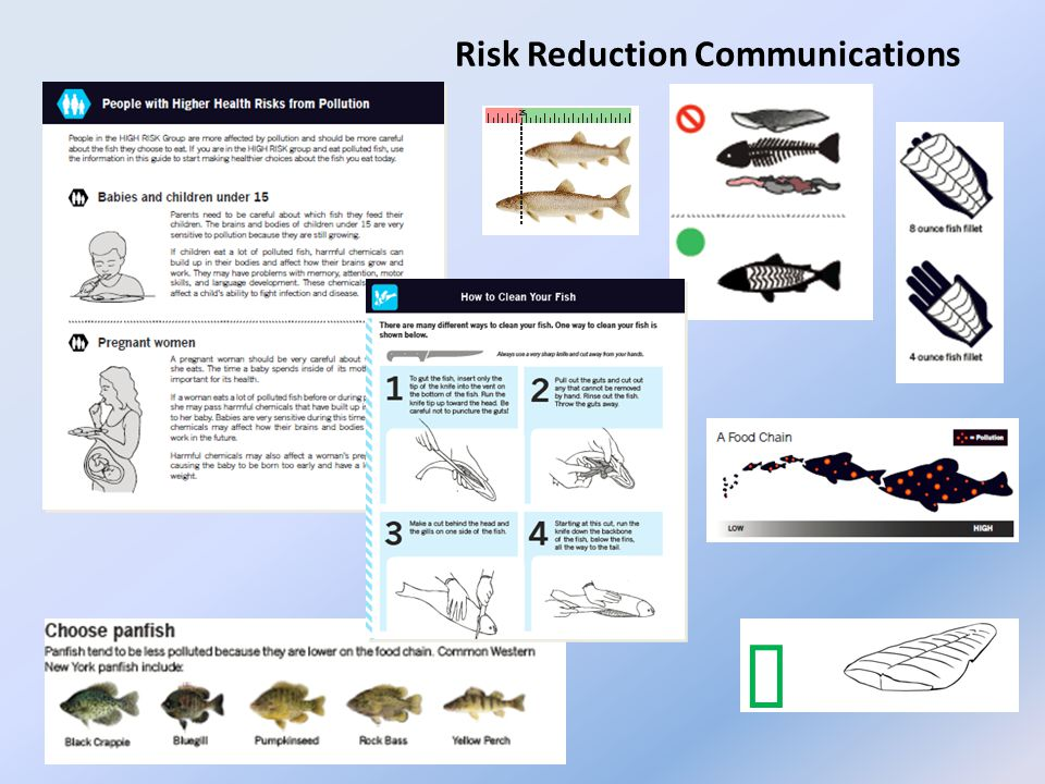 Risk Reduction Communications