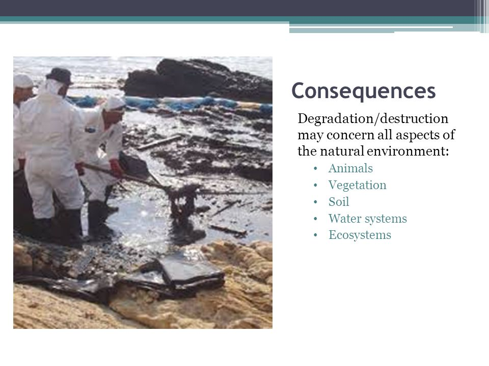 Consequences Degradation/destruction may concern all aspects of the natural environment: Animals Vegetation Soil Water systems Ecosystems