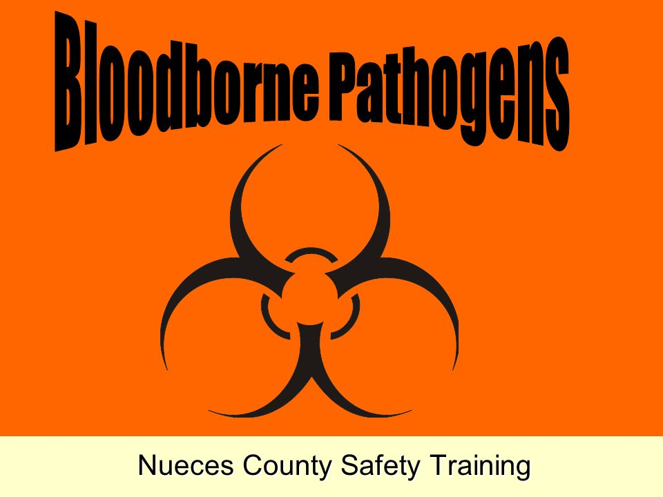 Safe House Keeping WEAR RUBBER GLOVES RESTRICT AREA USE DISPOSAL TOWELS FOR CLEANUP PUT CONTAMINATED BLOOD IN APPROVED CONTAINERS