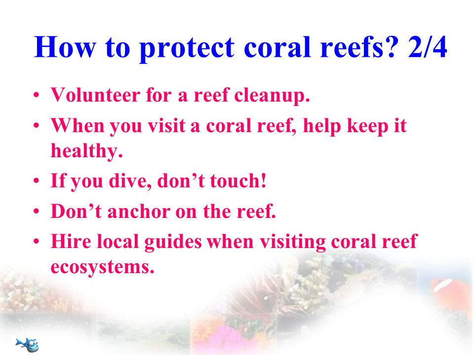 How to protect coral reefs. 2/4 Volunteer for a reef cleanup.