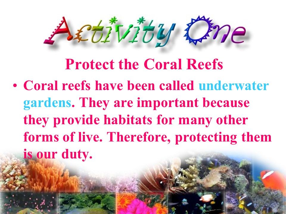 How to protect coral reefs.4/4 Volunteer.