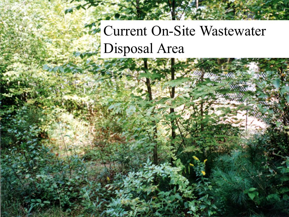  Current On-Site Wastewater Disposal Area