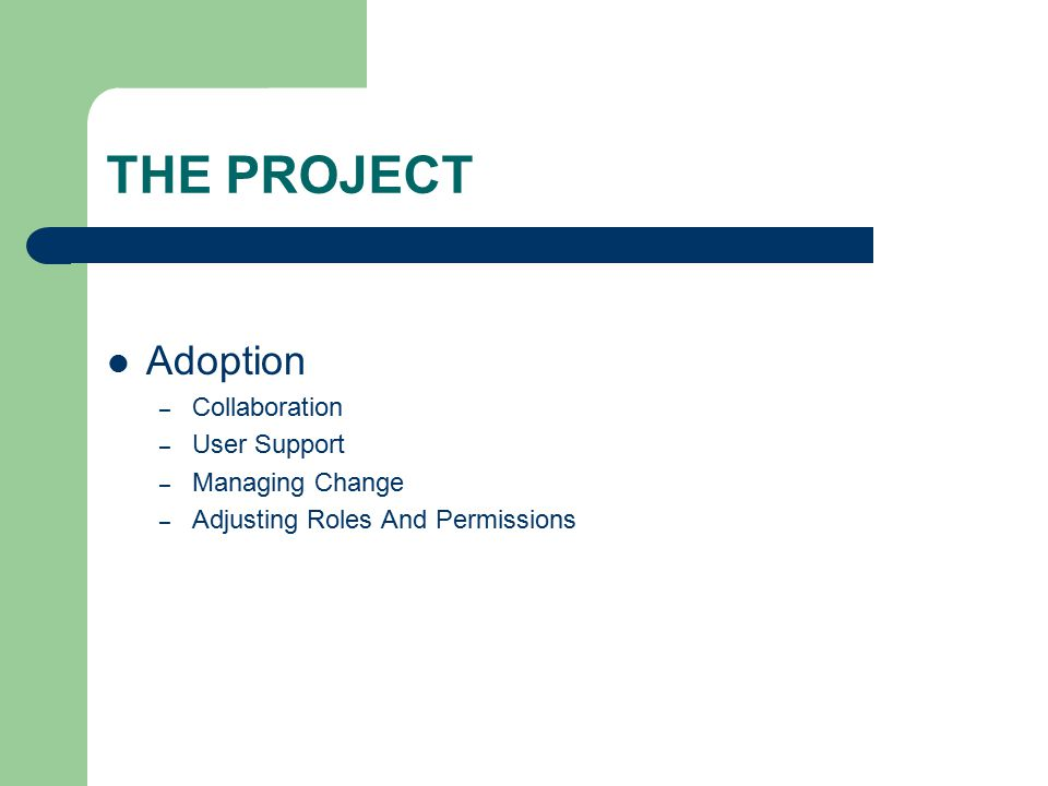 THE PROJECT Adoption – Collaboration – User Support – Managing Change – Adjusting Roles And Permissions