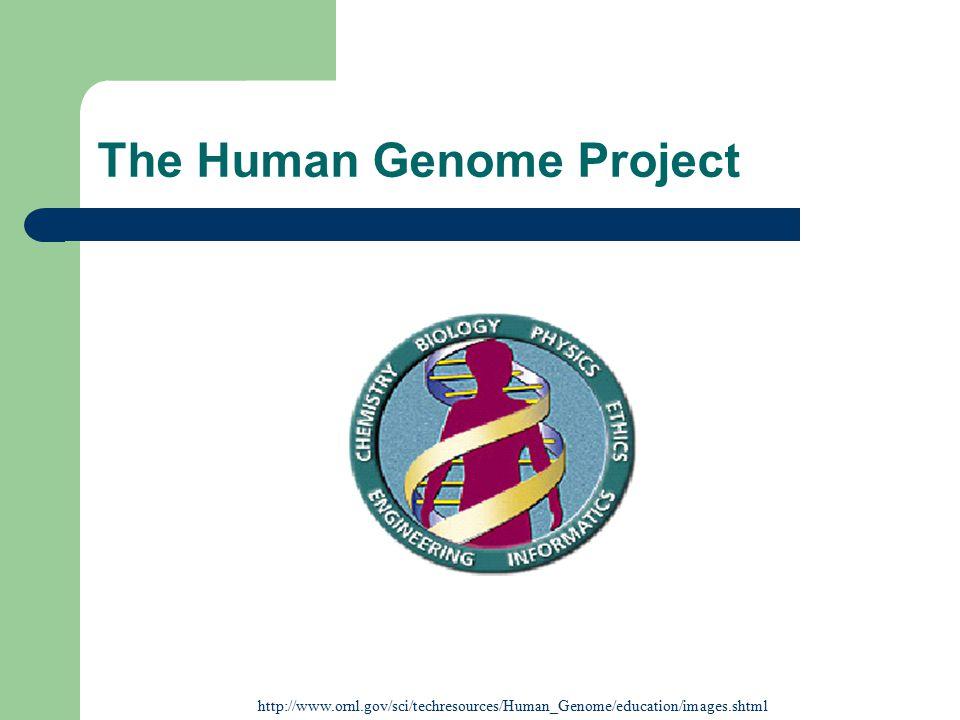Algorithms & Related Material http://portal.acm.org/citation.cfm?id=369190&jmp=citings&dl=G UIDE&dl=ACM http://www.pubmedcentral.nih.gov/articlerender.fcgi?tool=pubm ed&pubmedid=11504945 http://www.genome.org/cgi/content/full/11/9/1461 http://www.genome.org/cgi/content/full/7/5/401 http://www.pnas.org/cgi/content/full/98/17/9748 http://www.cse.ucsc.edu/~learithe/browser/goldenPa th/algo.html http://www.eecs.berkeley.edu/~gene/Papers/greedy.path.mergi ng.pdf --> ***detailed algorithm description***