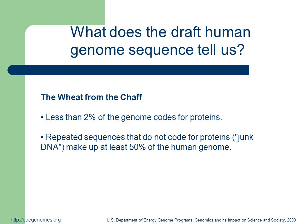 Whole Genome Shotgun Sequencing Venter and co-workers success in 1995 of sequencing the H.