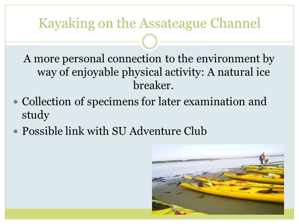 Kayaking on the Assateague Channel A more personal connection to the environment by way of enjoyable physical activity: A natural ice breaker.