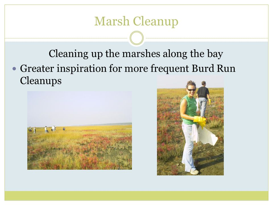 Marsh Cleanup Cleaning up the marshes along the bay Greater inspiration for more frequent Burd Run Cleanups
