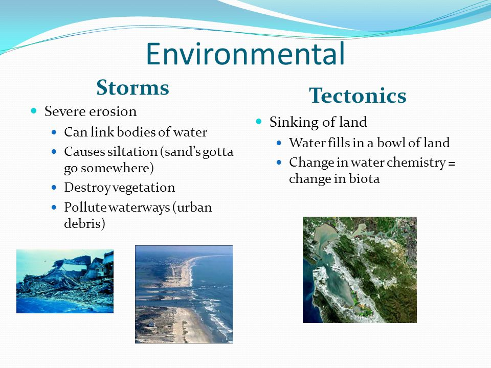 Environmental Storms Tectonics Severe erosion Can link bodies of water Causes siltation (sand's gotta go somewhere) Destroy vegetation Pollute waterways (urban debris) Sinking of land Water fills in a bowl of land Change in water chemistry = change in biota
