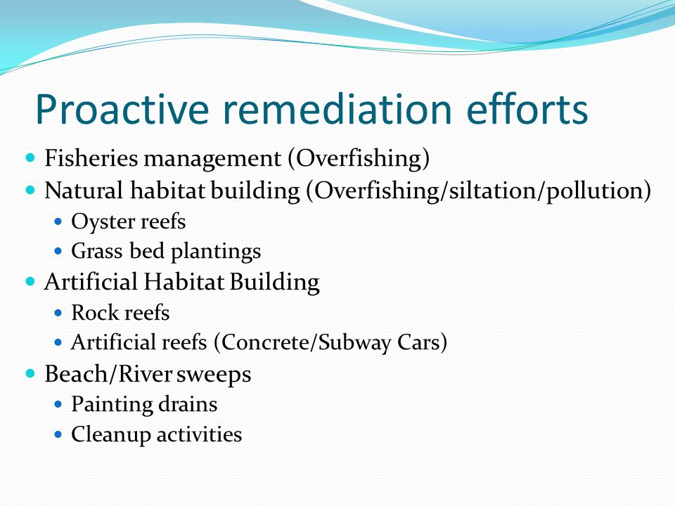 Proactive remediation efforts Fisheries management (Overfishing) Natural habitat building (Overfishing/siltation/pollution) Oyster reefs Grass bed plantings Artificial Habitat Building Rock reefs Artificial reefs (Concrete/Subway Cars) Beach/River sweeps Painting drains Cleanup activities