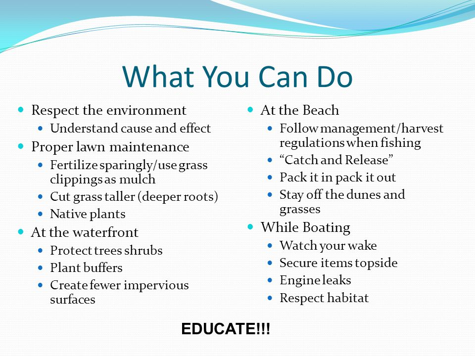 What You Can Do Respect the environment Understand cause and effect Proper lawn maintenance Fertilize sparingly/use grass clippings as mulch Cut grass taller (deeper roots) Native plants At the waterfront Protect trees shrubs Plant buffers Create fewer impervious surfaces At the Beach Follow management/harvest regulations when fishing Catch and Release Pack it in pack it out Stay off the dunes and grasses While Boating Watch your wake Secure items topside Engine leaks Respect habitat EDUCATE!!!