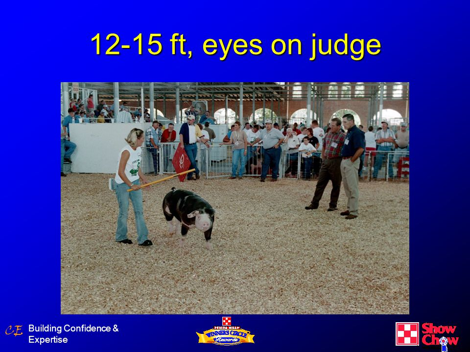 CE Building Confidence & Expertise 12-15 ft, eyes on judge