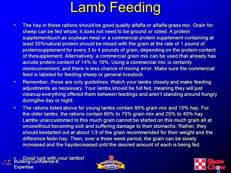 CE Lamb Feeding Building Confidence & Expertise The hay in these rations should be good quality alfalfa or alfalfa-grass mix.