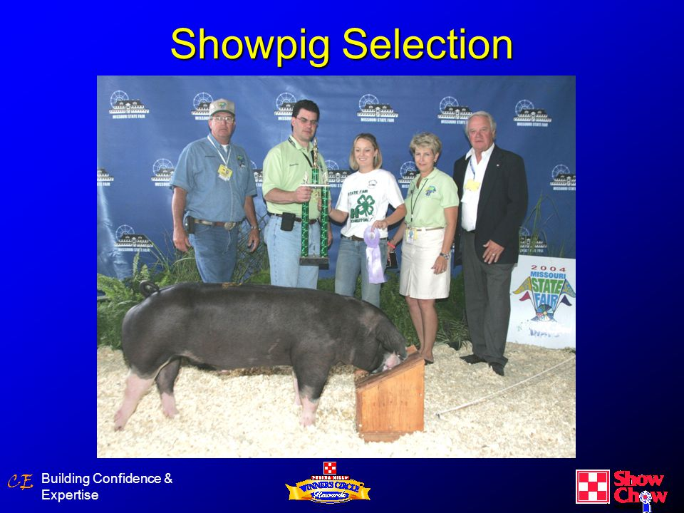CE Show Steer Building Confidence & Expertise