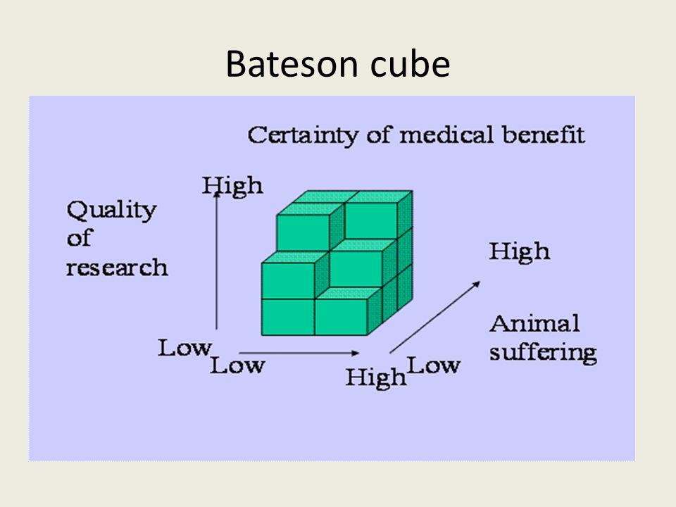 Bateson cube
