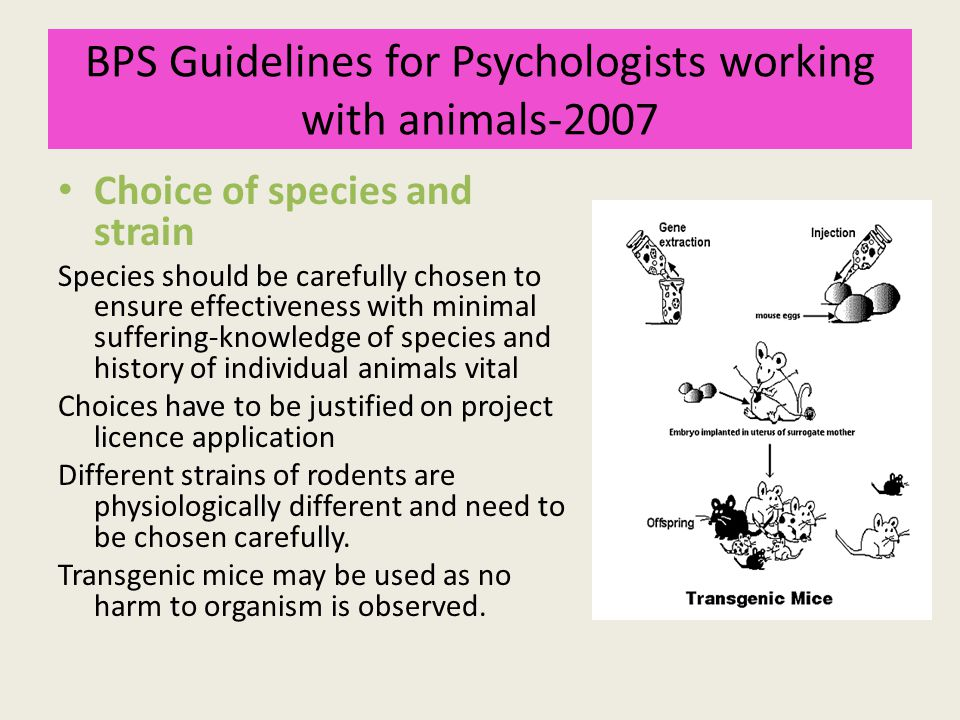 BPS Guidelines for Psychologists working with animals-2007 Choice of species and strain Species should be carefully chosen to ensure effectiveness wit