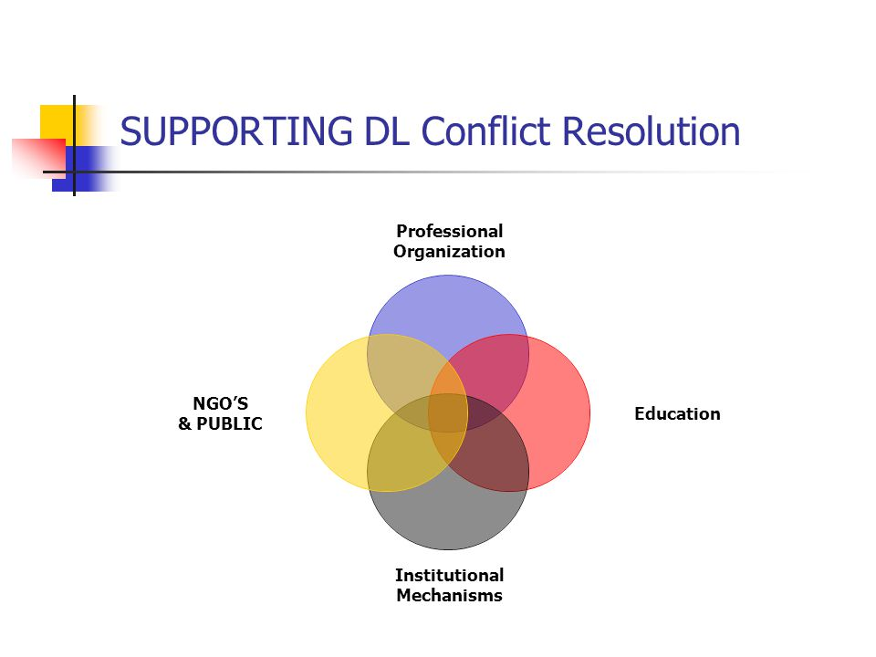 SUPPORTING DL Conflict Resolution Professional Organization Education Institutional Mechanisms NGO'S & PUBLIC