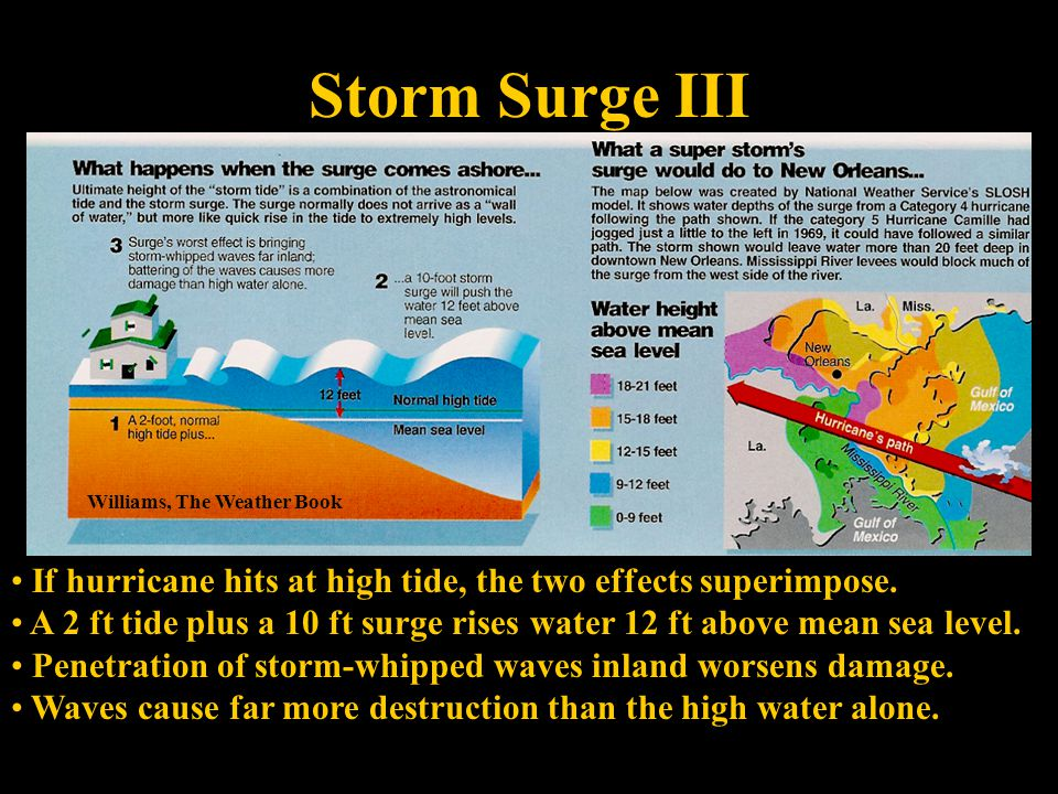 Storm Surge III Williams, The Weather Book If hurricane hits at high tide, the two effects superimpose.