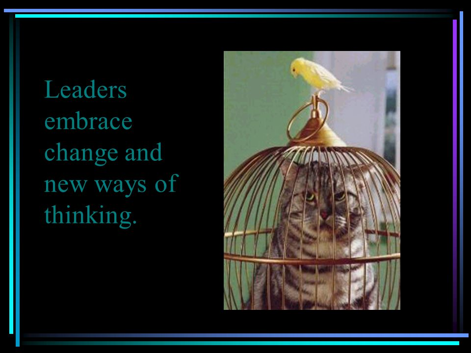 Leaders embrace change and new ways of thinking.