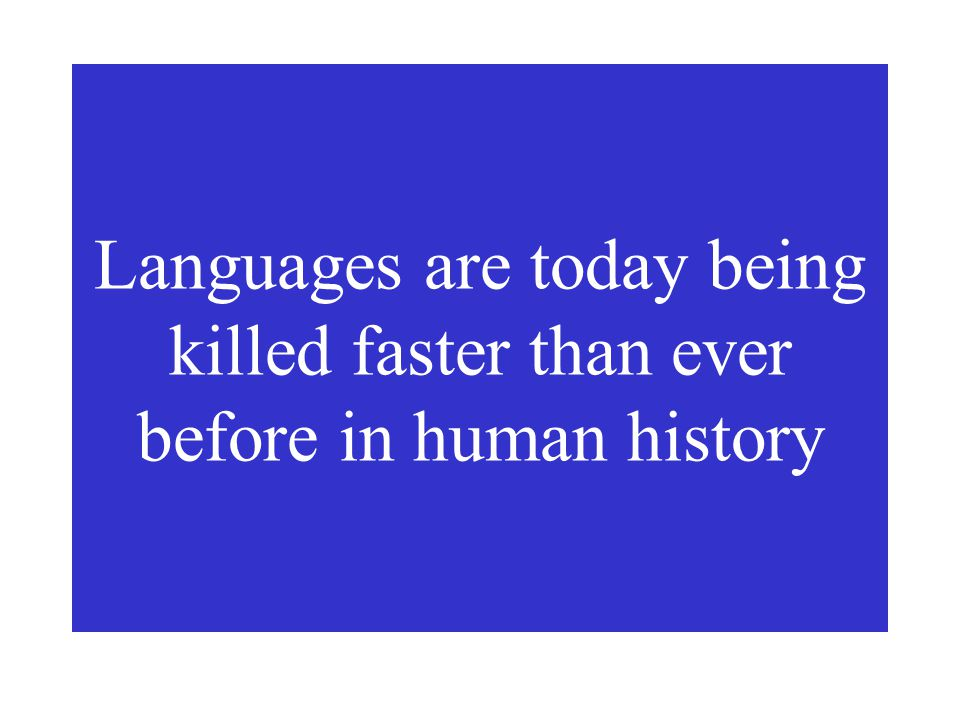 What is happening today to the world's languages? Are they being maintained? NO
