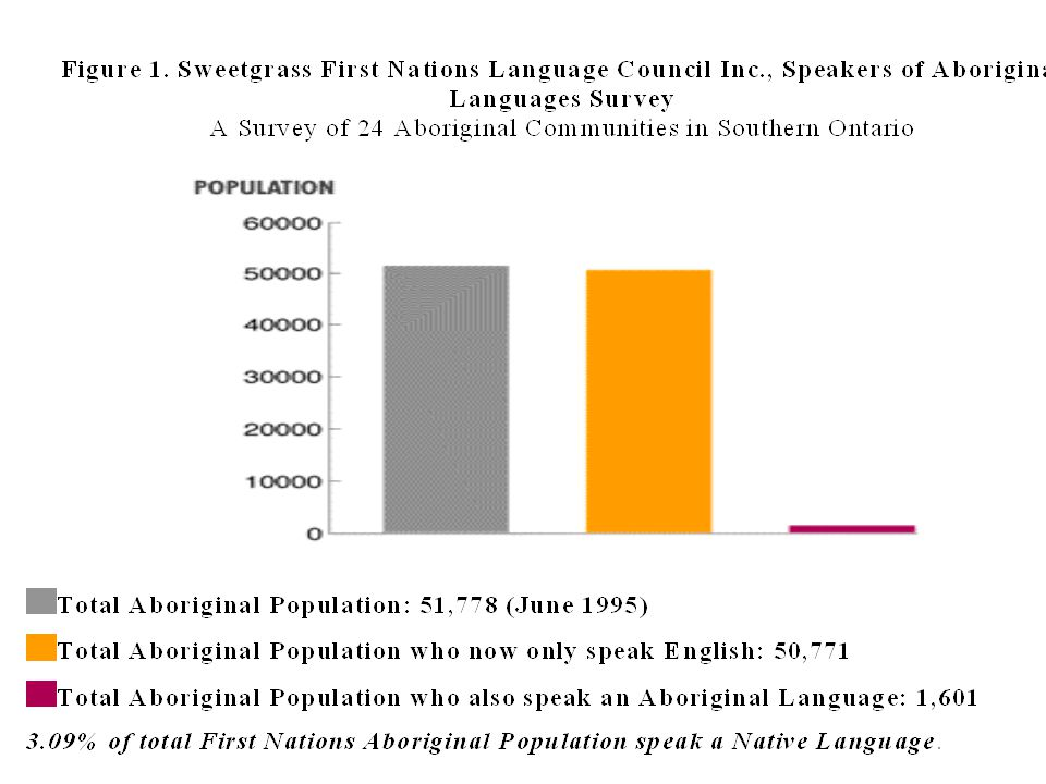 Dominant-language-only submersion programmes are widely attested as the least effective educationally for minority language students This is the model mostly used with children representing endangered language communities all over the world (provided that the children attend formal education in the first place)