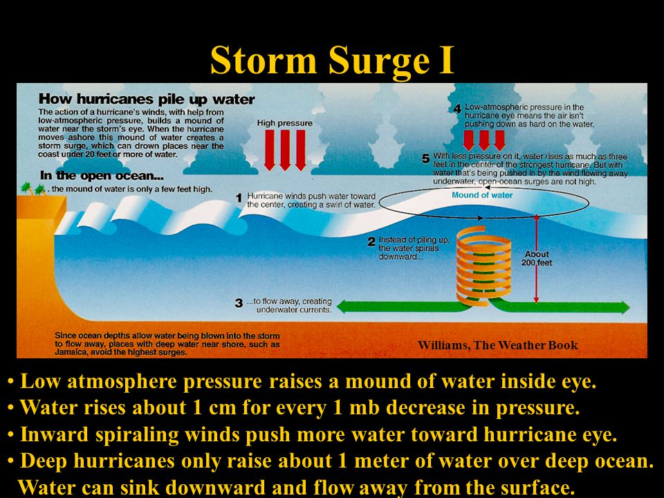 Storm Surge I Williams, The Weather Book Low atmosphere pressure raises a mound of water inside eye.