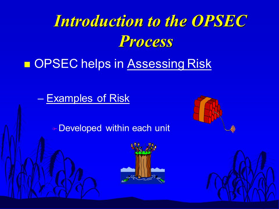 Introduction to the OPSEC Process Introduction to the OPSEC Process n OPSEC helps in Assessing Risk –Examples of Risk F Developed within each unit
