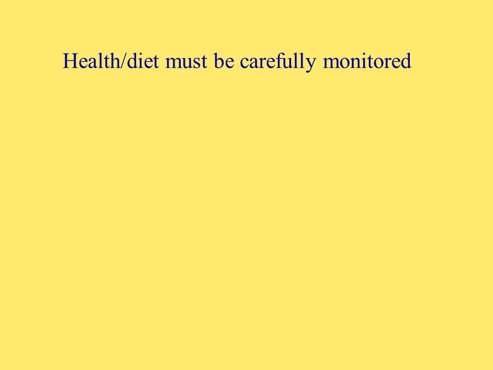 Health/diet must be carefully monitored
