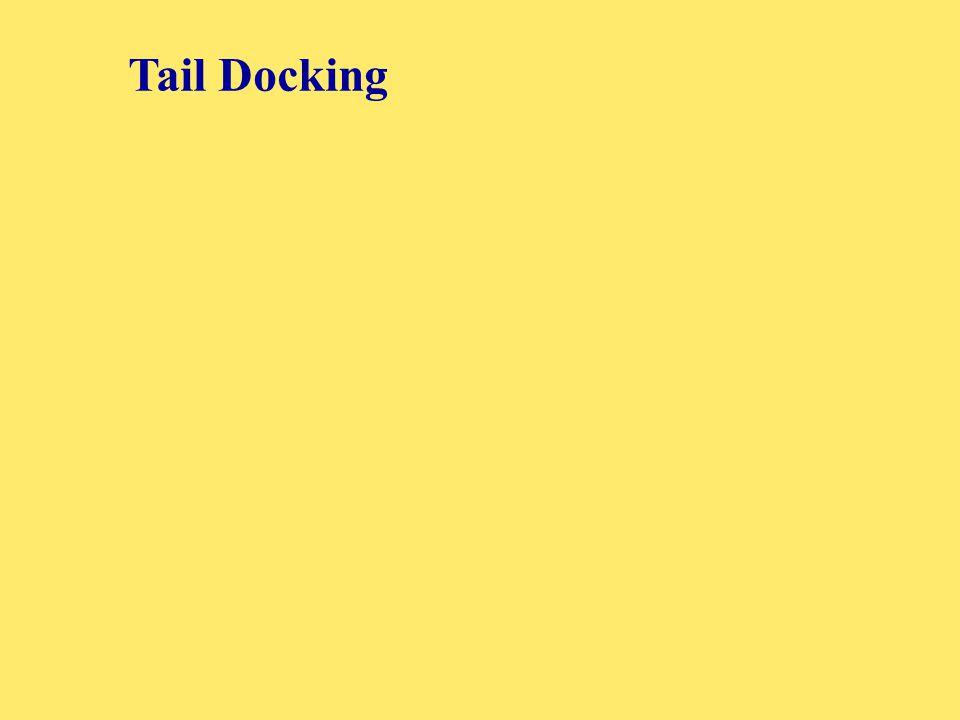 Tail Docking