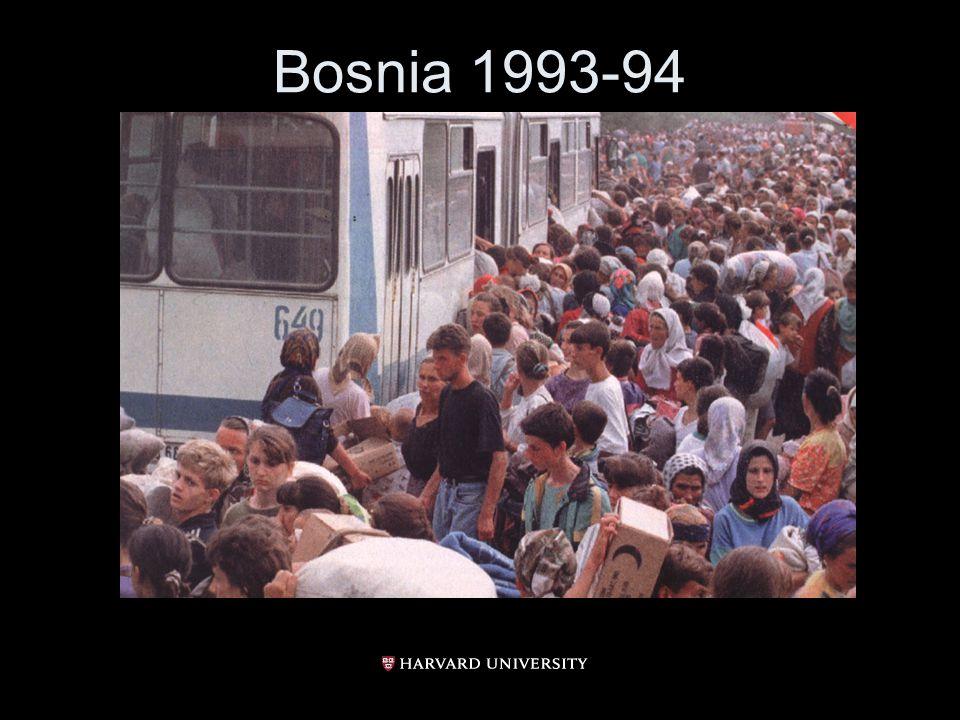 Bosnia 1993-94