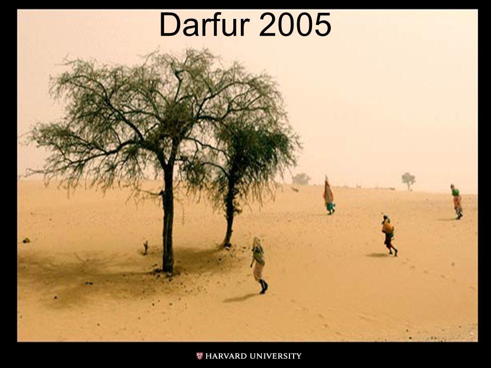 Darfur 2005