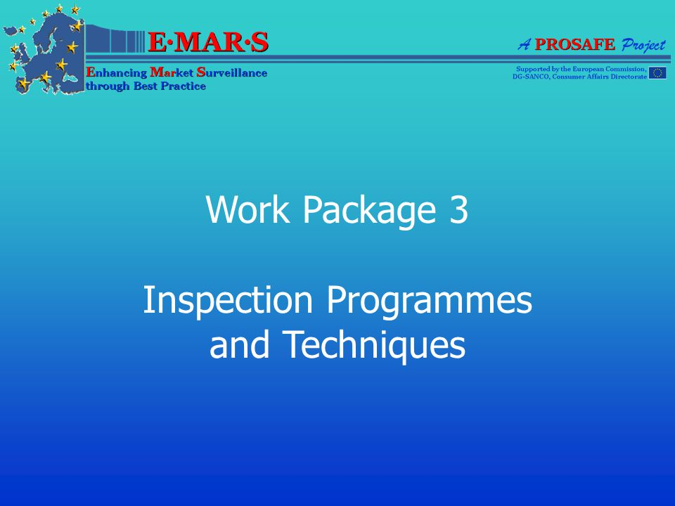 Work Package 3 Inspection Programmes and Techniques