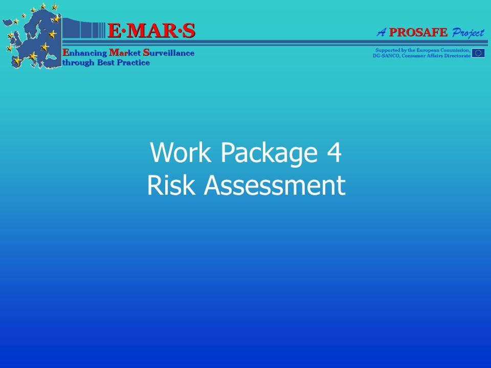 Work Package 4 Risk Assessment