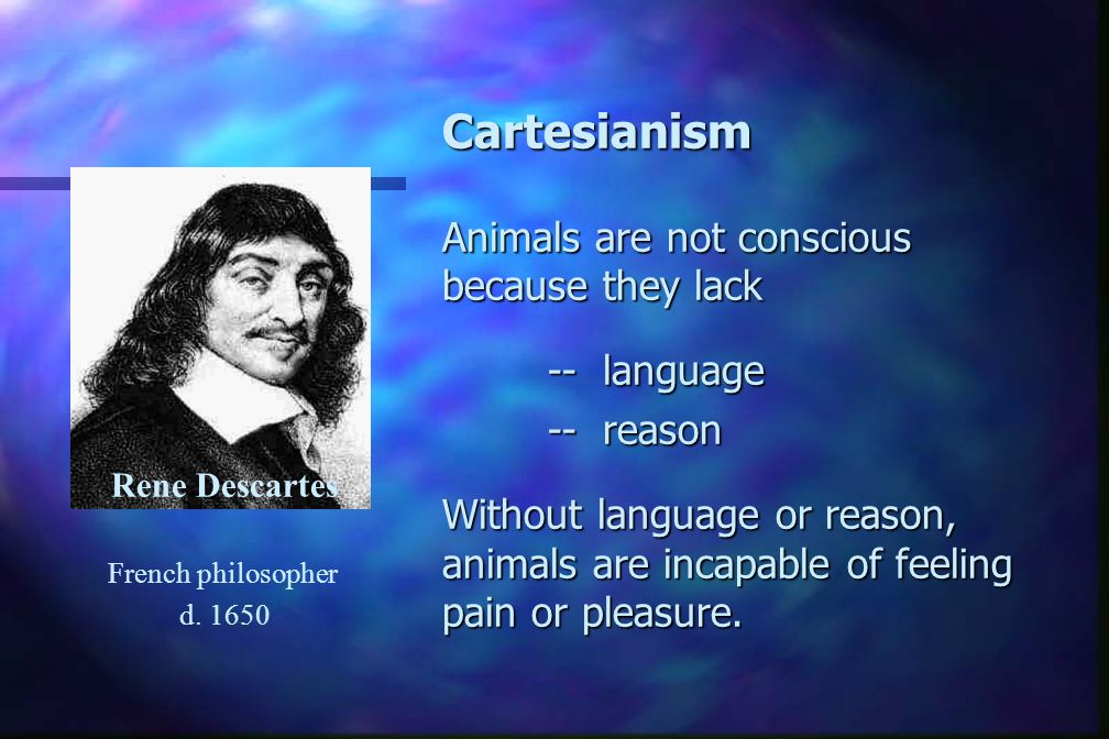 Cartesianism Animals are not conscious because they lack -- language -- reason Without language or reason, animals are incapable of feeling pain or pleasure.